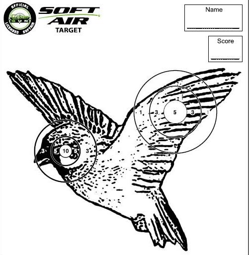 cible airsoft oiseau