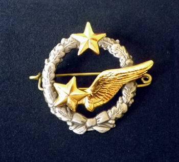 Insigne Brevet Elève Pilote Armée de l'Air DRAGO