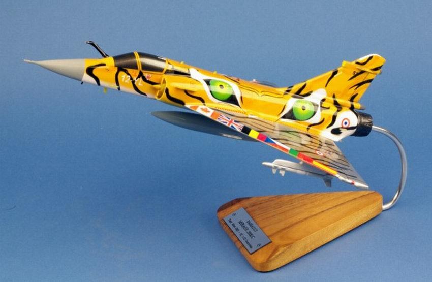 maquette Avion de chasse militaire Mirage 2000C EC 1/12 Cambrésis NATO Tiger Meet DASSAULT AVIATION