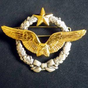 Insigne Brevet Pilote Armee de Air